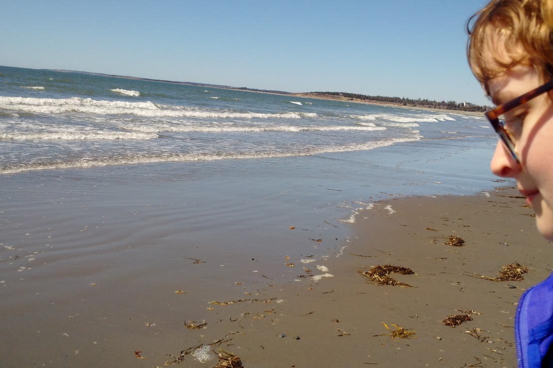 Port Maitland BeachSign